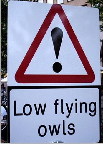 необычные дорожные знаки